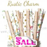 300pcs RUSTIC CHARM Party Paper Straws Mixed