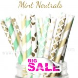 300pcs MINT NEUTRALS Paper Straws Mixed
