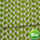 Lime Green Checkered Paper Straws 500pcs