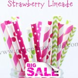 250pcs STRAWBERRY LIMEADE Paper Straws Mixed