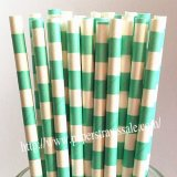 Aqua Circle Stripe Paper Drinking Straws 500pcs