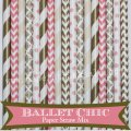 300pcs Ballet Chic Party Paper Straws Mixed