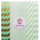200pcs Mint Striped Chevron Damask Paper Straws Mixed