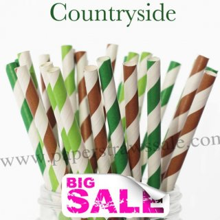 300pcs Countryside Theme Paper Straws Mixed